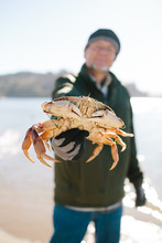 Man Holding Crab At Beach