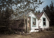 Vintage Yukon house