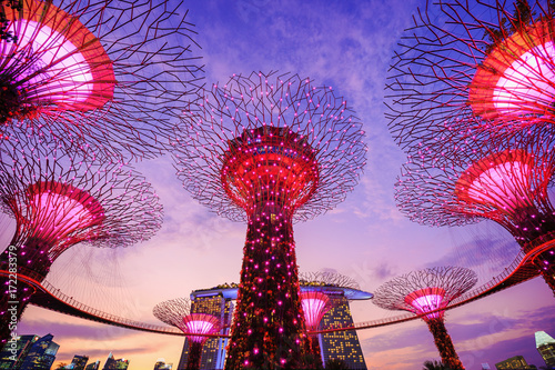 Foto op Canvas Singapore Gardens by the bay at twilight, Singapore
