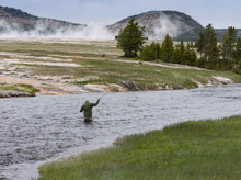 A Fly Fisherman Fishing In The Firehole River In Yellowstone National Park. He Is Standing In The Water. Mist From Natural Hot Springs Are In The Background.