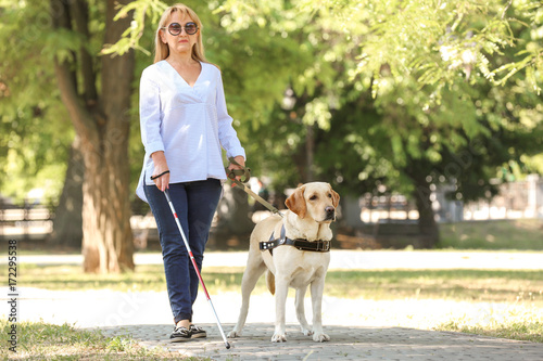 Guide dog helping blind woman in park Fototapet