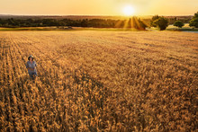 Farmer Woman Standing In Their Wheat Field At Sunset