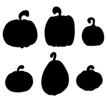Pumpkins Collection, Various Types. Back Vector Silhouettes