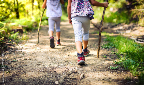 Obraz Children hiking in mountains or forest with sport hiking shoes. - fototapety do salonu