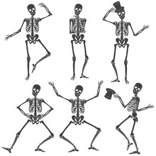 Dancing Skeletons. Different S...