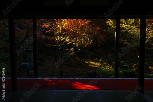 Photo  京都 圓光寺の日本庭園の紅葉 その5 Kyoto Autumn Landscape at Enkouji No.7