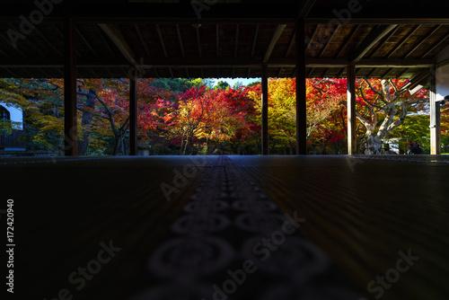 京都 圓光寺の日本庭園の紅葉 その3 Kyoto Autumn Landscape at Enkouji No.5 Canvas Print