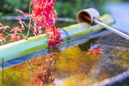 京都 秋の景色 水瓶と紅葉 その2 Kyoto Autumn Landscape No.3