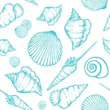 Shells_pattern-07