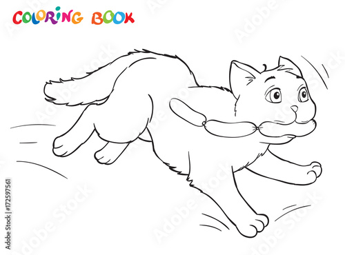 Spoed Foto op Canvas Doe het zelf Coloring cartoon cat runs away with sausages. For adults vector illustration. Black and white lines