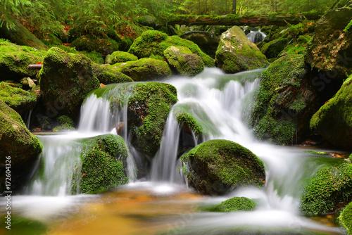 Obraz Waterfall on mountain stream in the National park Sumava-Czech Republic - fototapety do salonu