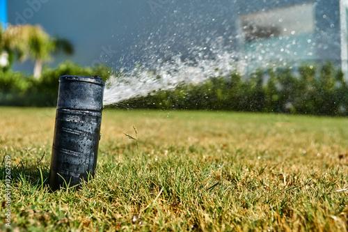 Foto op Canvas Begraafplaats Automatic watering system