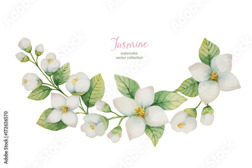 Fotografie, Obraz  Watercolor vector wreath of flowers and branches Jasmine isolated on a white background