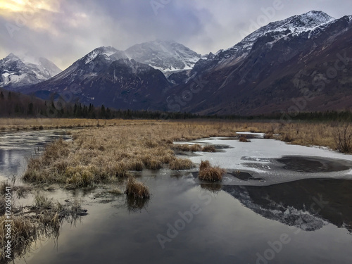 Foto op Canvas Paarden Alaska reflections frozen pool