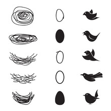 Vector Of Bird's Nest And Eggs And Birds On White Background. Easy Editable Layered Vector Illustration.