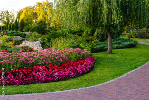 flowerbed with flowers in a park with landscape design Fototapeta