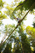 Man Walking Along A Tightrope Highline Between The Trees