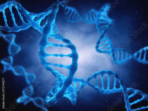 The dna double helix molecule is the genetic blueprint for life the dna double helix molecule is the genetic blueprint for life molecular genetics malvernweather Choice Image