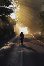Lonely Pilgrim Walking In The ...