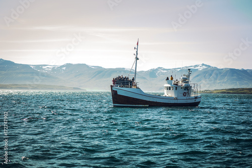 Icelandic fishing boat for whale watching. Poster Mural XXL
