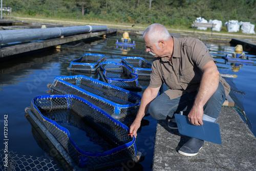senior manager inspecting nets at fish farm Canvas Print