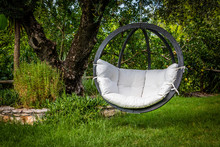 Lounge Hanging Chair With Whit...