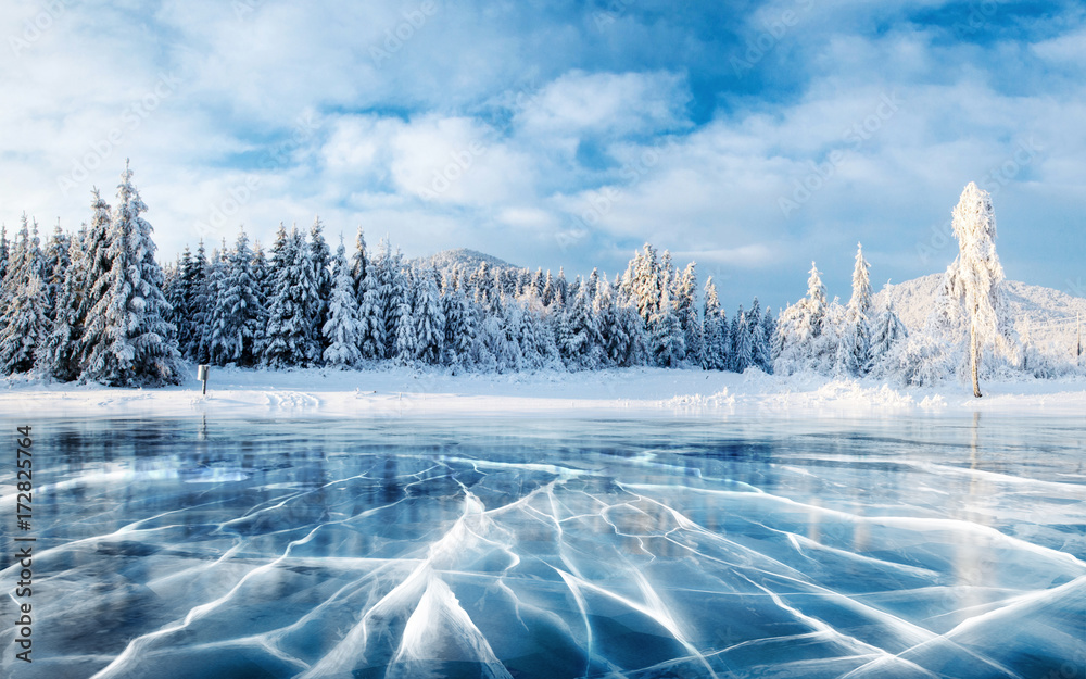 Fototapeta Blue ice and cracks on the surface of the ice. Frozen lake under a blue sky in the winter. The hills of pines. Winter. Carpathian, Ukraine, Europe.