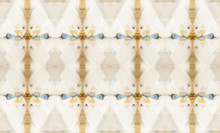 Unique Design Photographed Inside Ancient Kaleidoscope