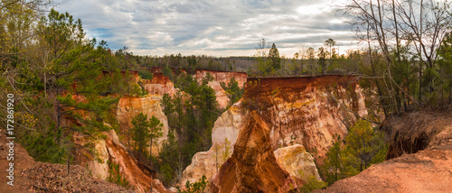 Tuinposter Canyon Panoramic aerial view of canyons and thicket in the Providence Canyon State Park in cloudy autumn day, Georgia, USA