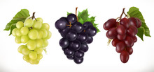 Red And White Table Grapes, Wi...