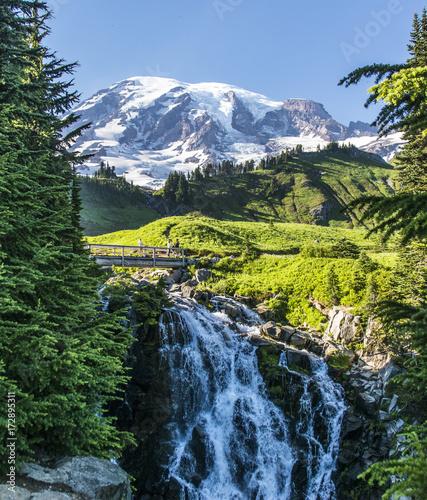 Plakat Edith Creek Falls i Mt Rainier