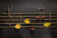 Musical Notes Conception. Wood...