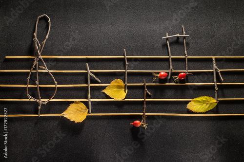 Zdjęcie XXL Koncepcje muzyczne notatki. Drewniane nuty i liście.