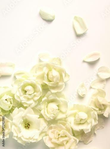 kwiaty-ecru-z-odpadajacymi-platkami-na-bialym-blacie