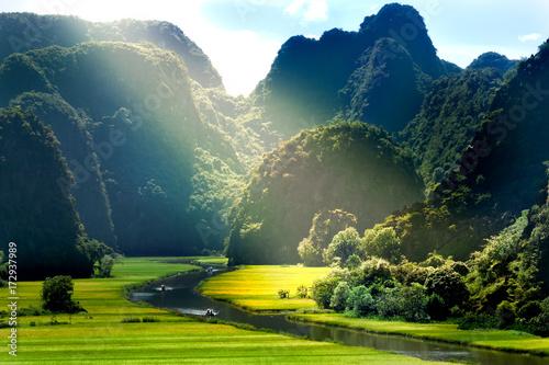 Rice field and river, NinhBinh, vietnam landscapes Fototapete
