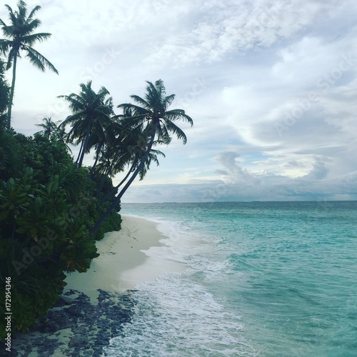 Staande foto Tropical strand tropical