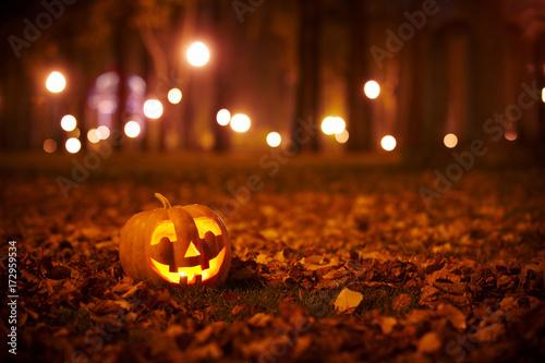Fotografie, Obraz  Kind Halloween Pumpkin in the park