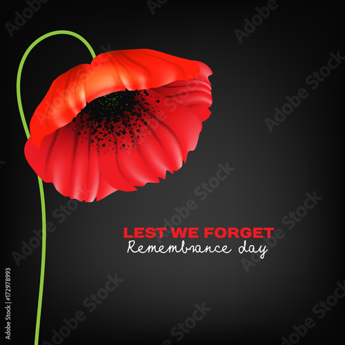Remembrance Day Greeting Card Beautiful Realistic Red Poppy Flower