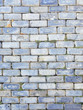 Grey flagstones texture wall template