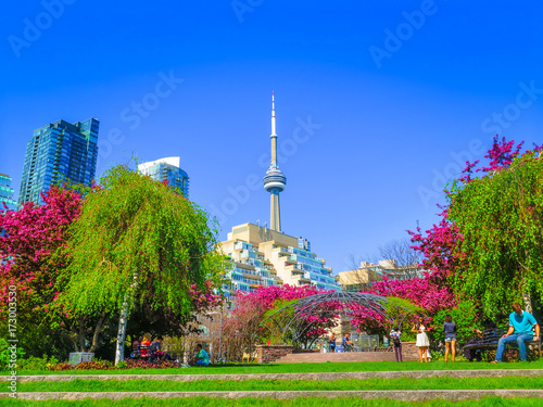 Visiting Toronto in Ontario Canvas Print