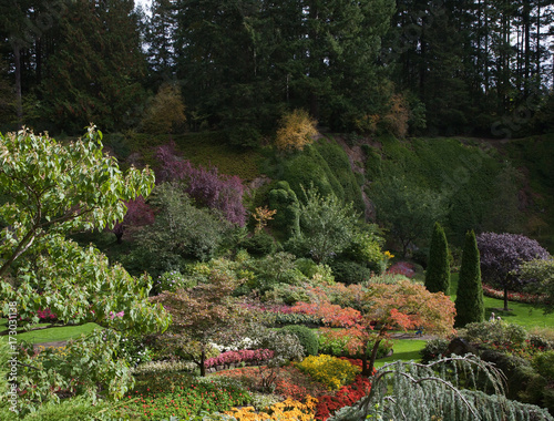 Foto op Canvas Zen Flower beds and track for tourists