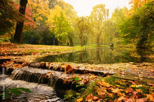 jesienny-pejzaz-na-strumien-kolorowe-liscie-i-drzewa-w-pogodny-dzien