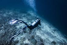 Scuba Diver With Long Fins