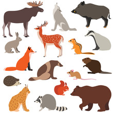 Vector Illustration Of Cute Wo...