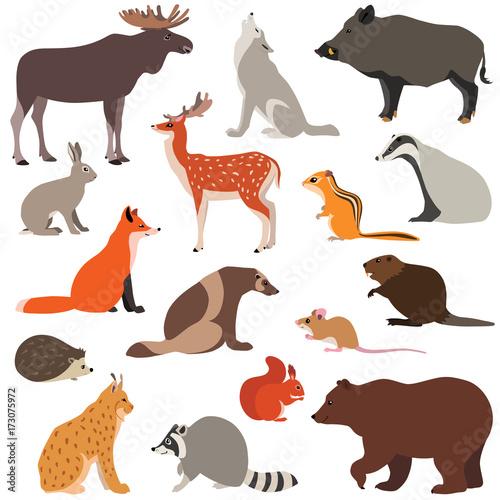 Fototapeta premium Ilustracja wektorowa uroczych zwierząt leśnych na białym tle, takich jak lis, zając, wilk, łoś, wiewiórka ...