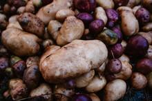 Yukon Gold And Purple Potatoes