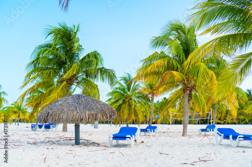 Spoed Foto op Canvas Natuur Exotic tropical empty sandy beach with umbrellas and beach beds surrounded by palm trees