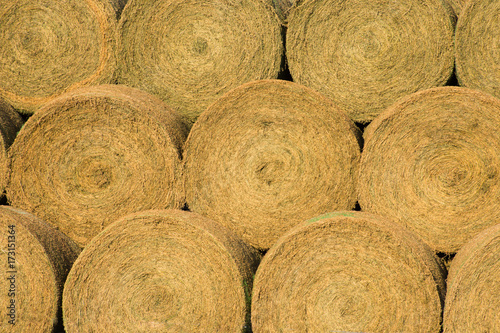 Close Up Of Large Round Golden Hay Bales Photographed From The