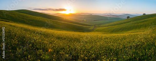 Photo  The green field Tuscany Italy