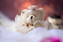 Closeup Image Of Small Teddy B...